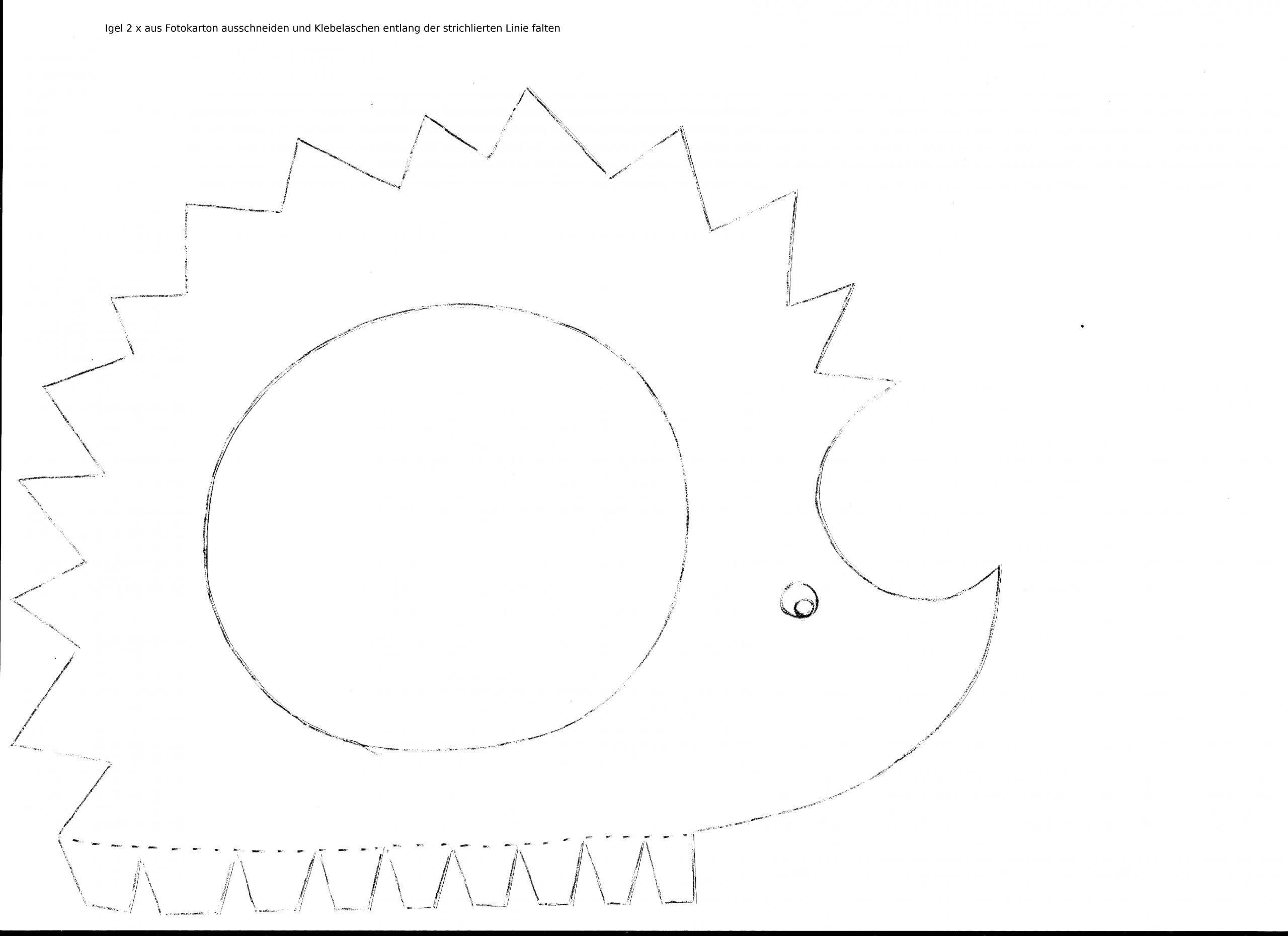 Igellaterne Basteln ⋆ Momo verwandt mit Igel Schablone