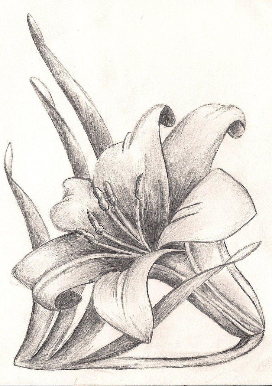 In 2020 | Blumen Zeichnen, Blumen Bleistiftzeichnungen für Bleistiftzeichnungen Blumen