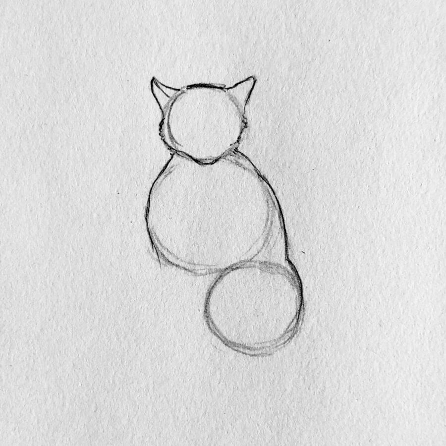 In Fünf Einfachen Schritten Eine Katze Zeichnen ganzes Katze Zeichnen Lernen