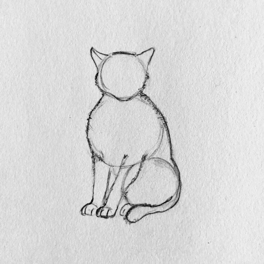 In Fünf Einfachen Schritten Eine Katze Zeichnen in Katze Zeichnen Lernen
