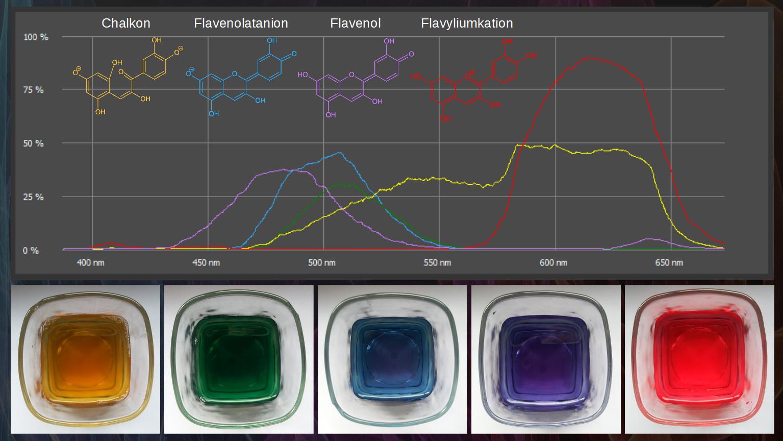 Indikatorfärbung (Rotkohlsaft) – Spectral-Explorer bestimmt für Rotkohlsaft Indikator