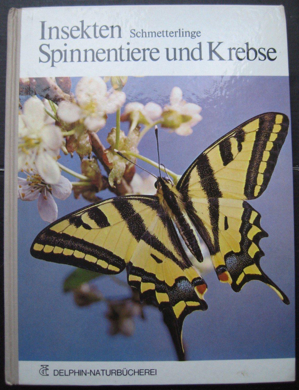Insekten, Schmetterlinge, Spinnentiere Und Krebse bei Schmetterlinge Insekten