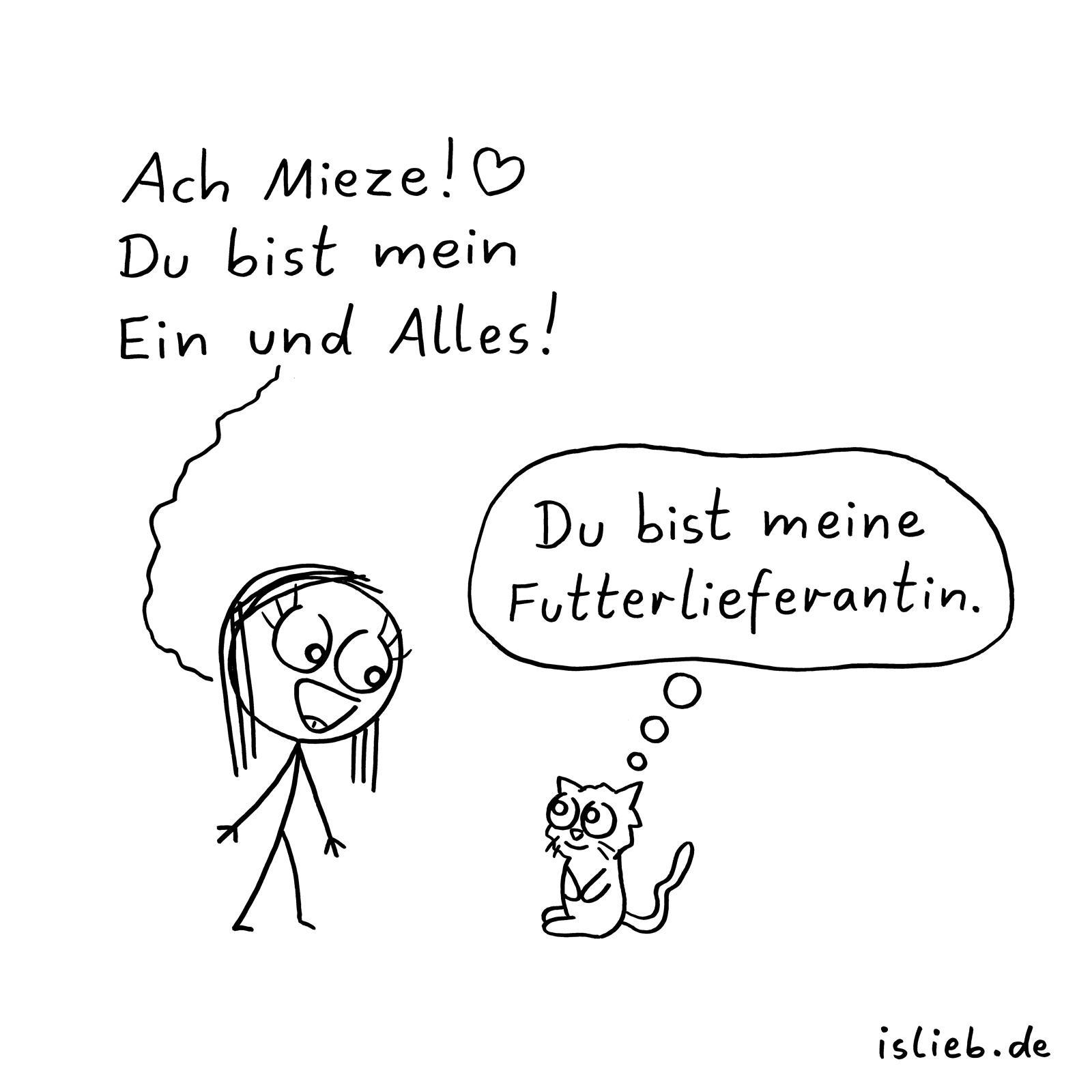 Katze #katzen #comic #islieb (Mit Bildern) | Katzen Zitate bestimmt für Katzenbilder Comic