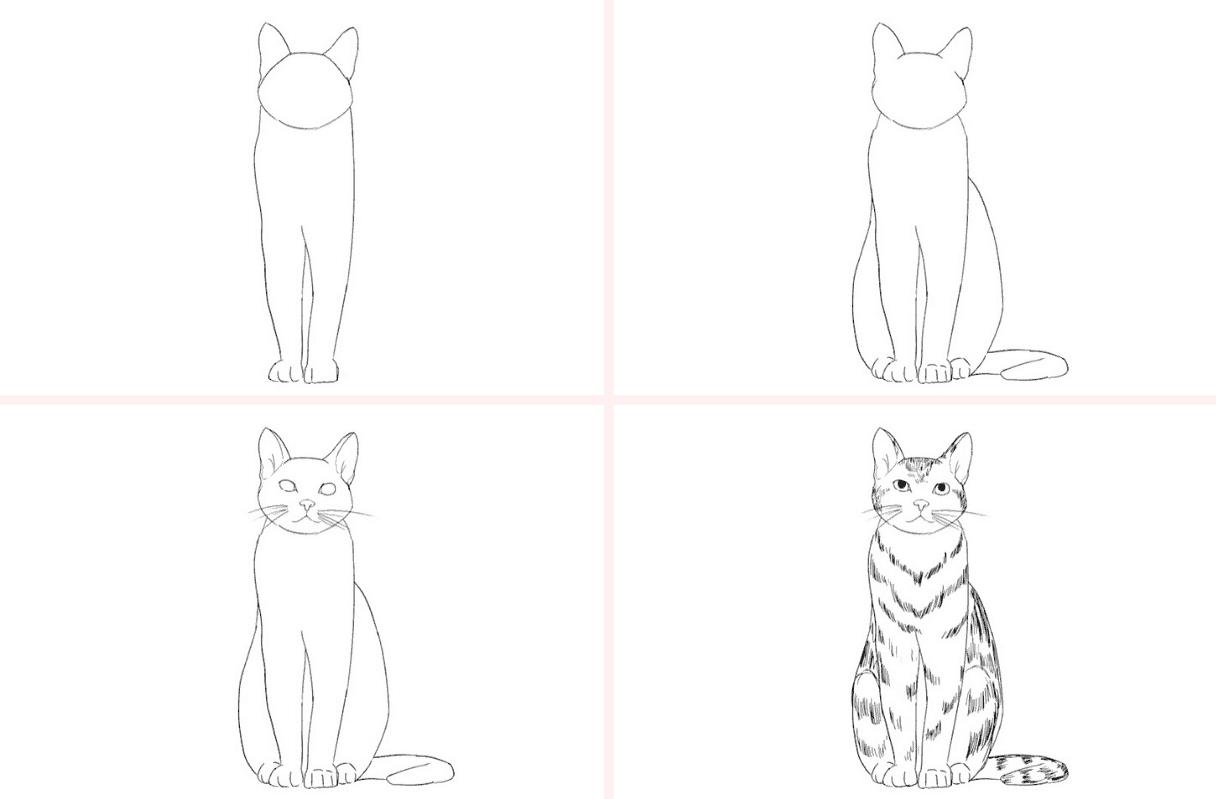 Katze Zeichnen Lernen - 5 Schritt Anleitung Für Schöne Katzen mit Katze Malen Einfach