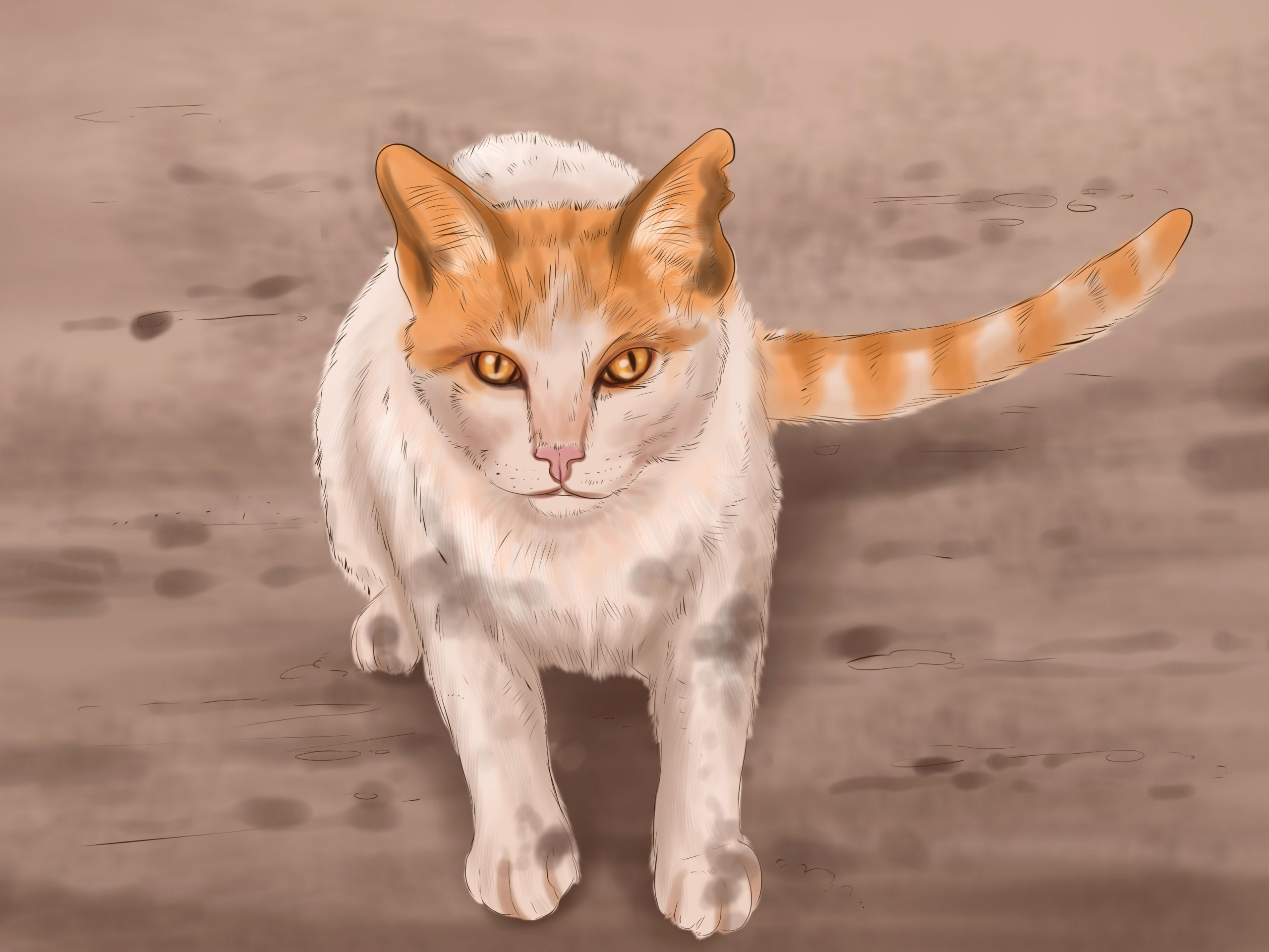 Katzen Bilder Zum Ausdrucken Best Einer Katze Etwas in Katzenbilder Zum Ausdrucken