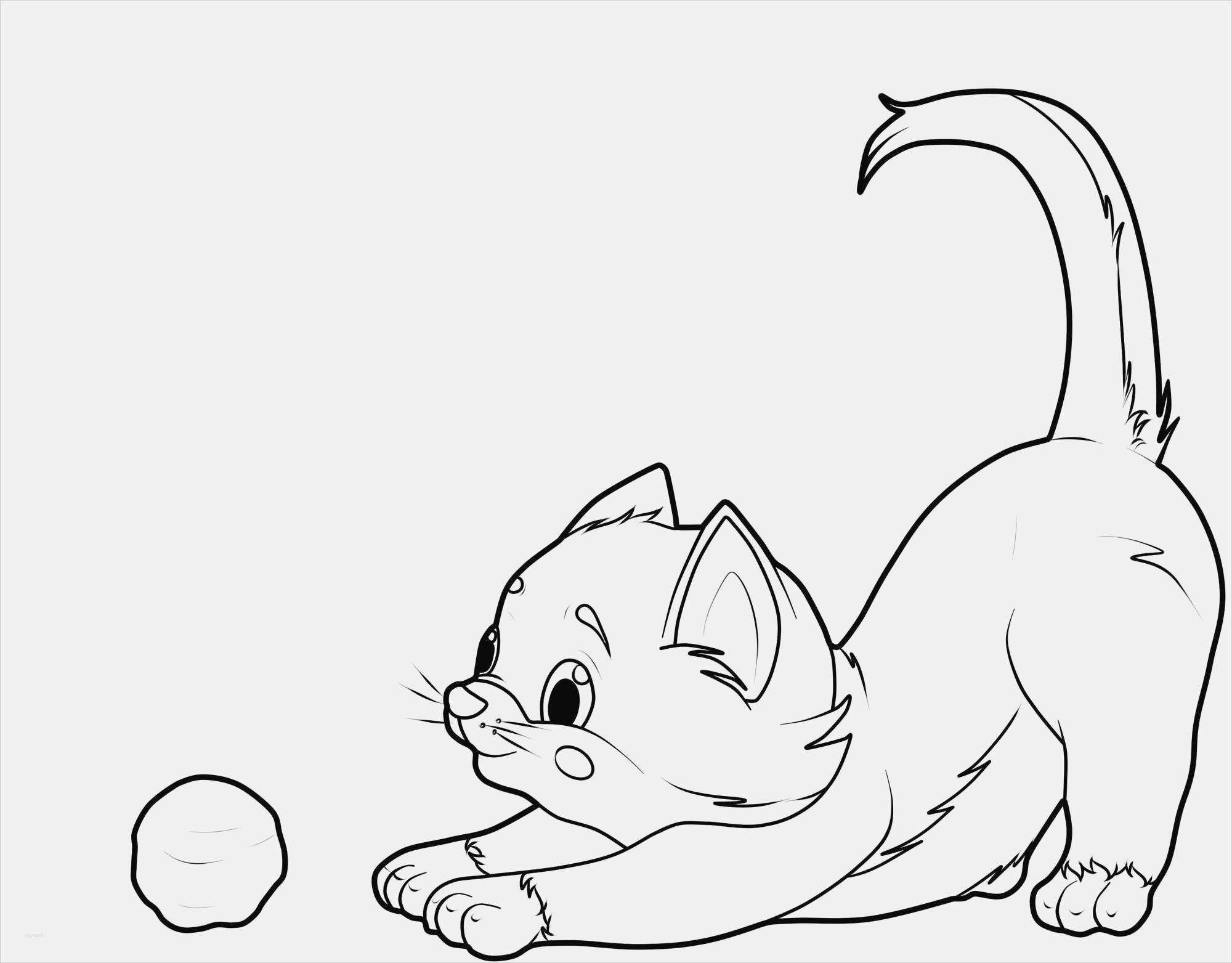 Katzen Malen Vorlagen Wunderbar Kostenlose Malvorlage Katzen bestimmt für Ausmalbilder Katzen Kostenlos