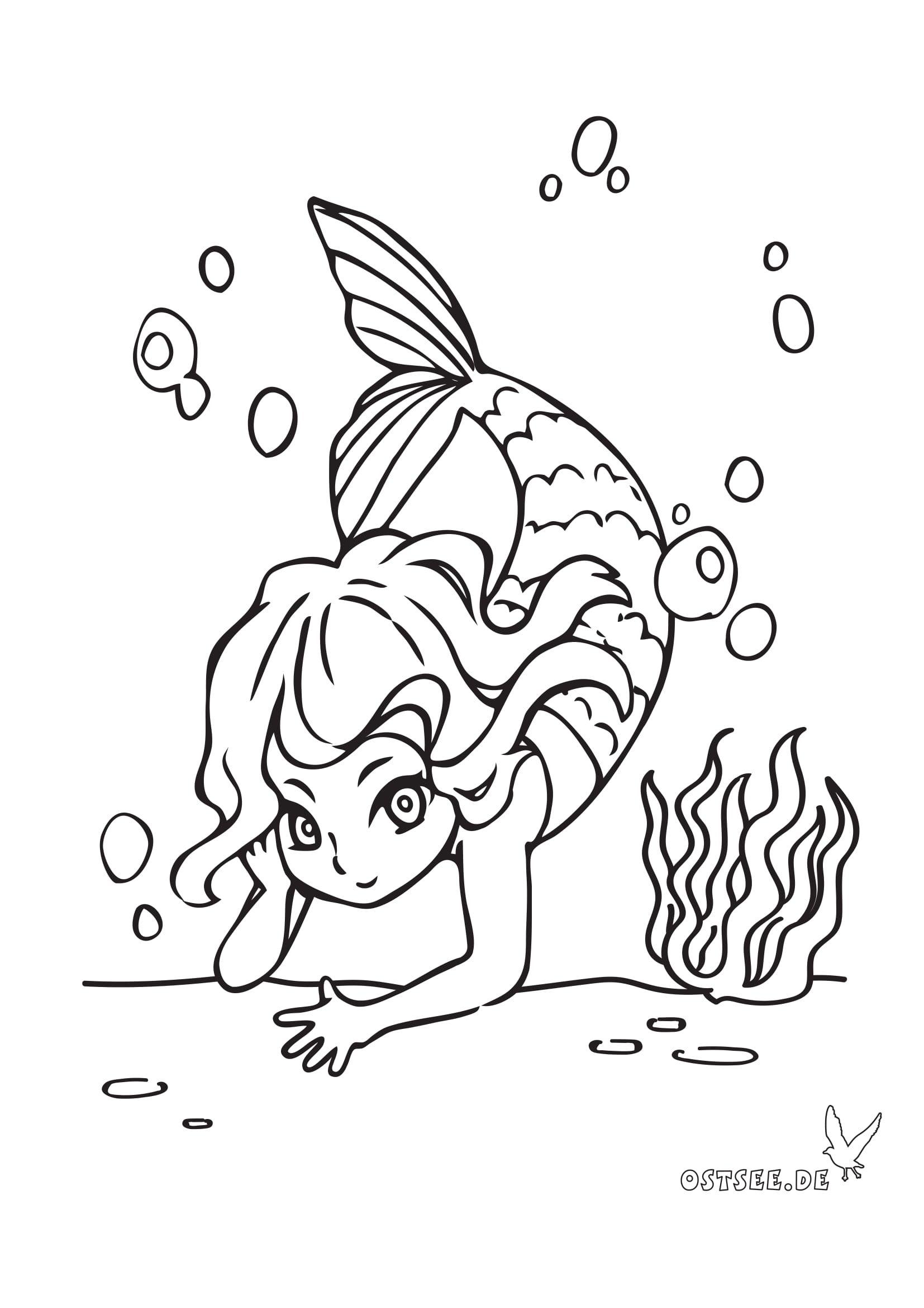 malvorlage meerjungfrau  kinderbilderdownload