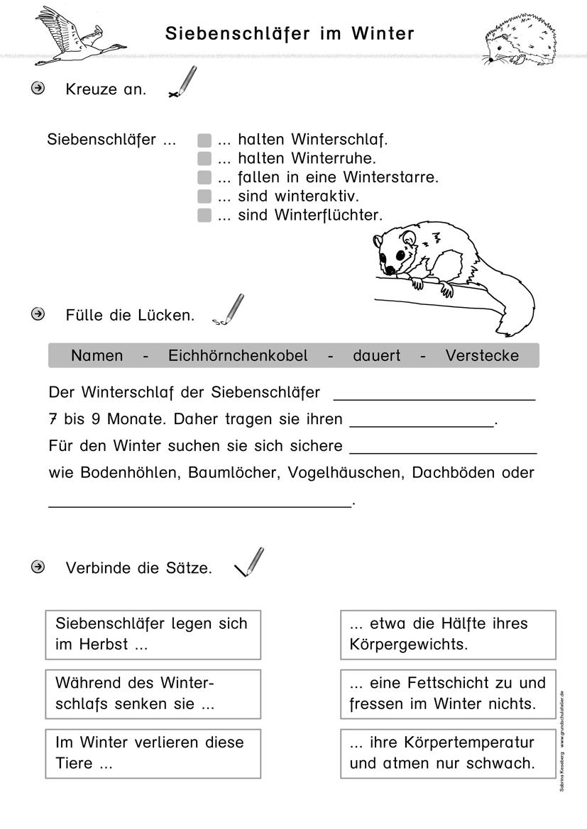Kostenlose Arbeitsblätter Für Die Grundschule für Dritte Klasse Deutsch Arbeitsblätter