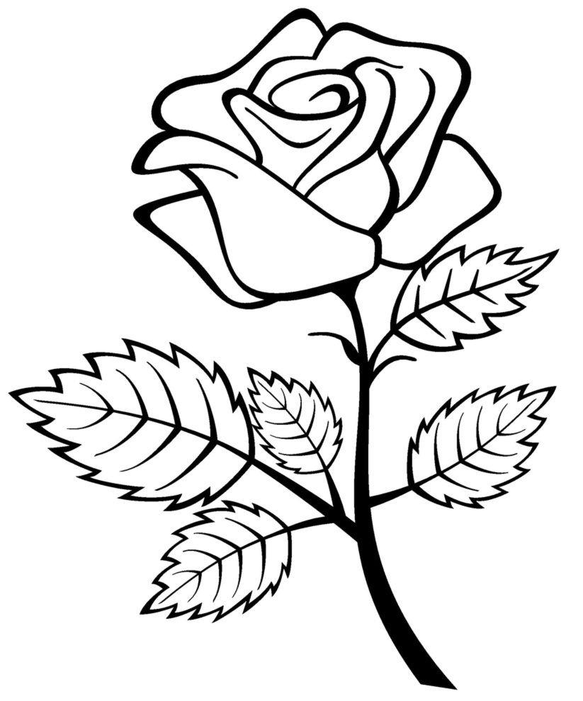 Kostenlose Druckbare Rosen Malvorlagen Für Kinder In 2020 verwandt mit Blumenstrauß Ausmalbilder