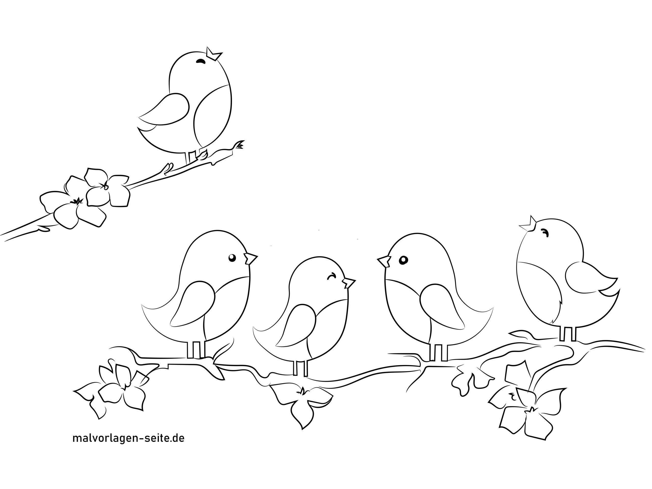 Kostenlose Fensterbild Vorlage Mit Vögeln Frühling Und Sommer bei Malvorlagen Vögel
