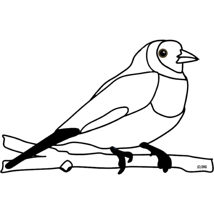 Kostenlose Malvorlage Tiere: Ausmalbild Vogel Zum Ausmalen mit Vogel Zum Ausmalen
