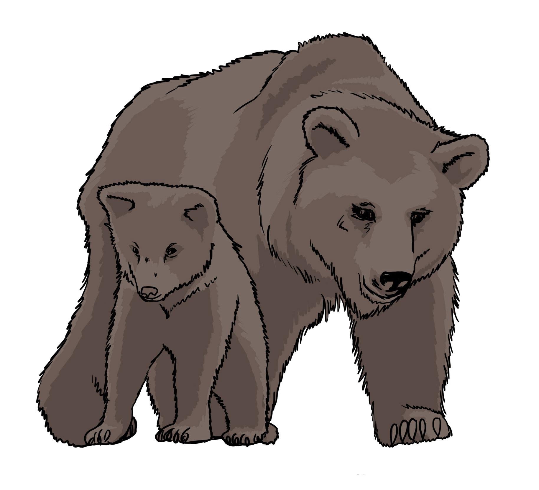 Kostenlose Zeichnungen Von Tieren - Poster, Bilder & Pdf verwandt mit Tierbilder Download