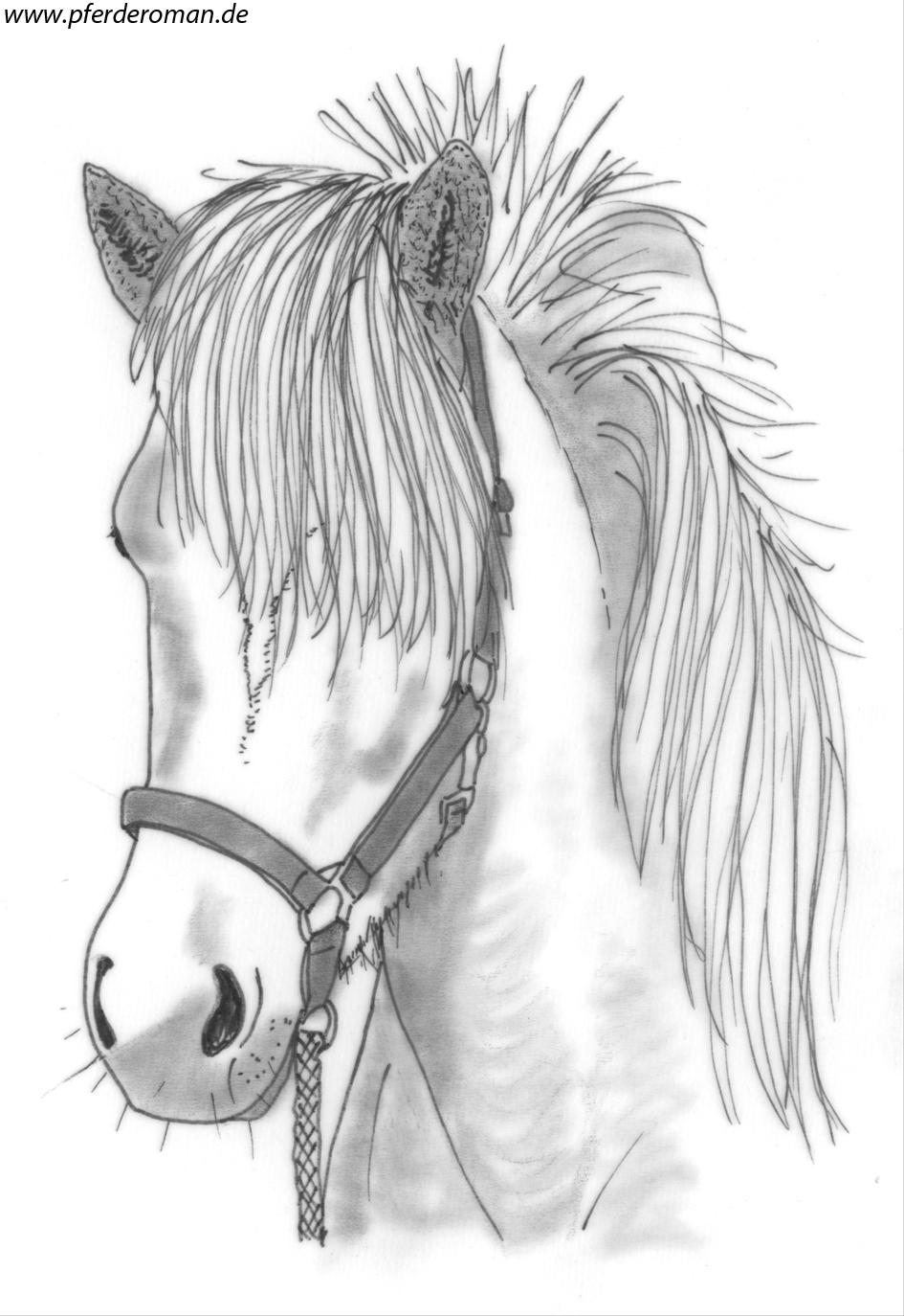 Kostenloste Pferdebilder Zum Ausmalen bei Pferdebilder Zum Malen