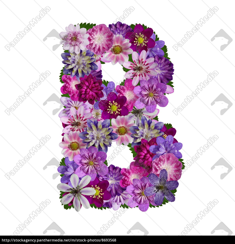 Lizenzfreies Foto 8693568 - Blumen Alphabet Buchstabe B in Blume Mit 6 Buchstaben