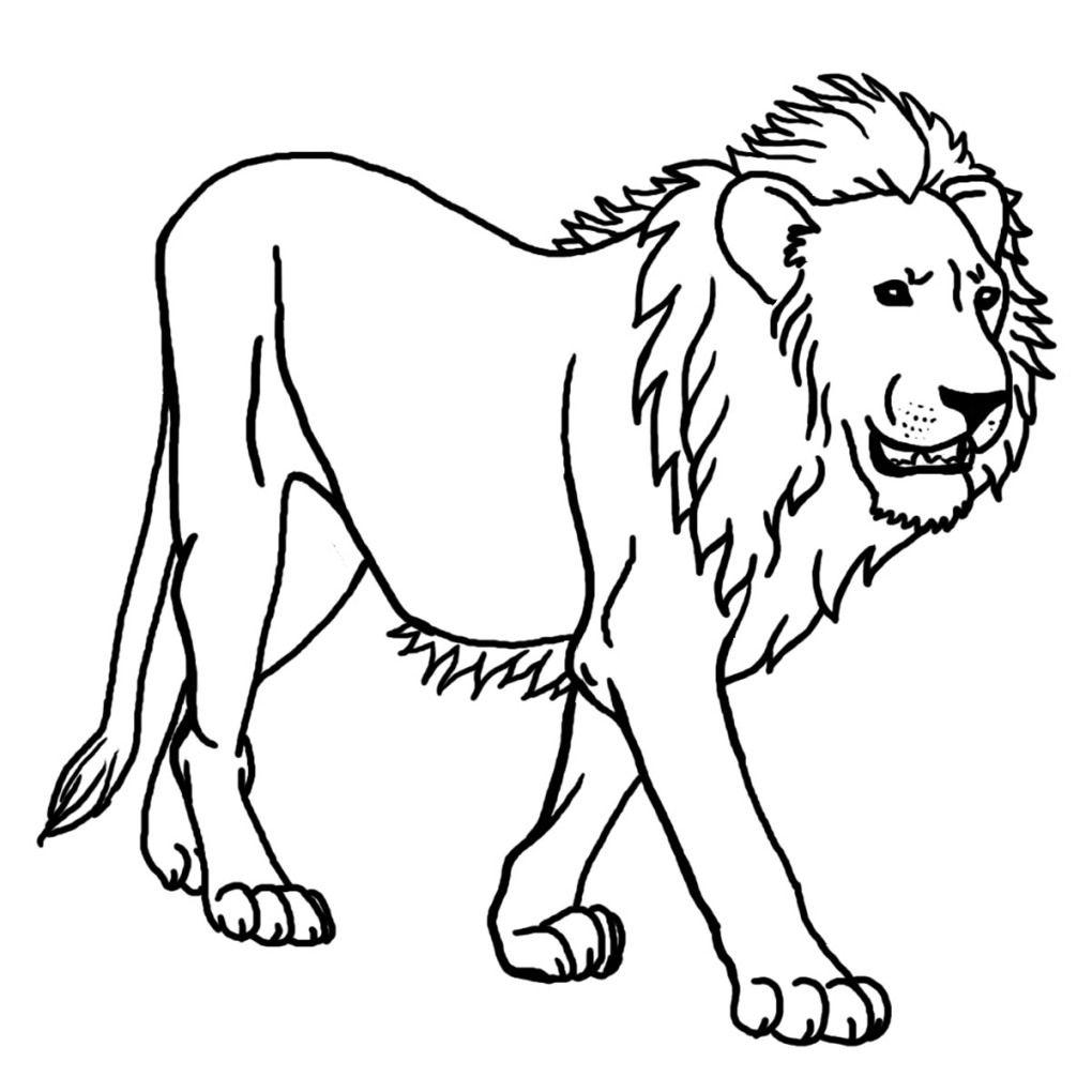 Löwe Ausmalbilder Kostenlose | Löwen Bilder, Ausmalbild Löwe innen Ausmalbild Löwe