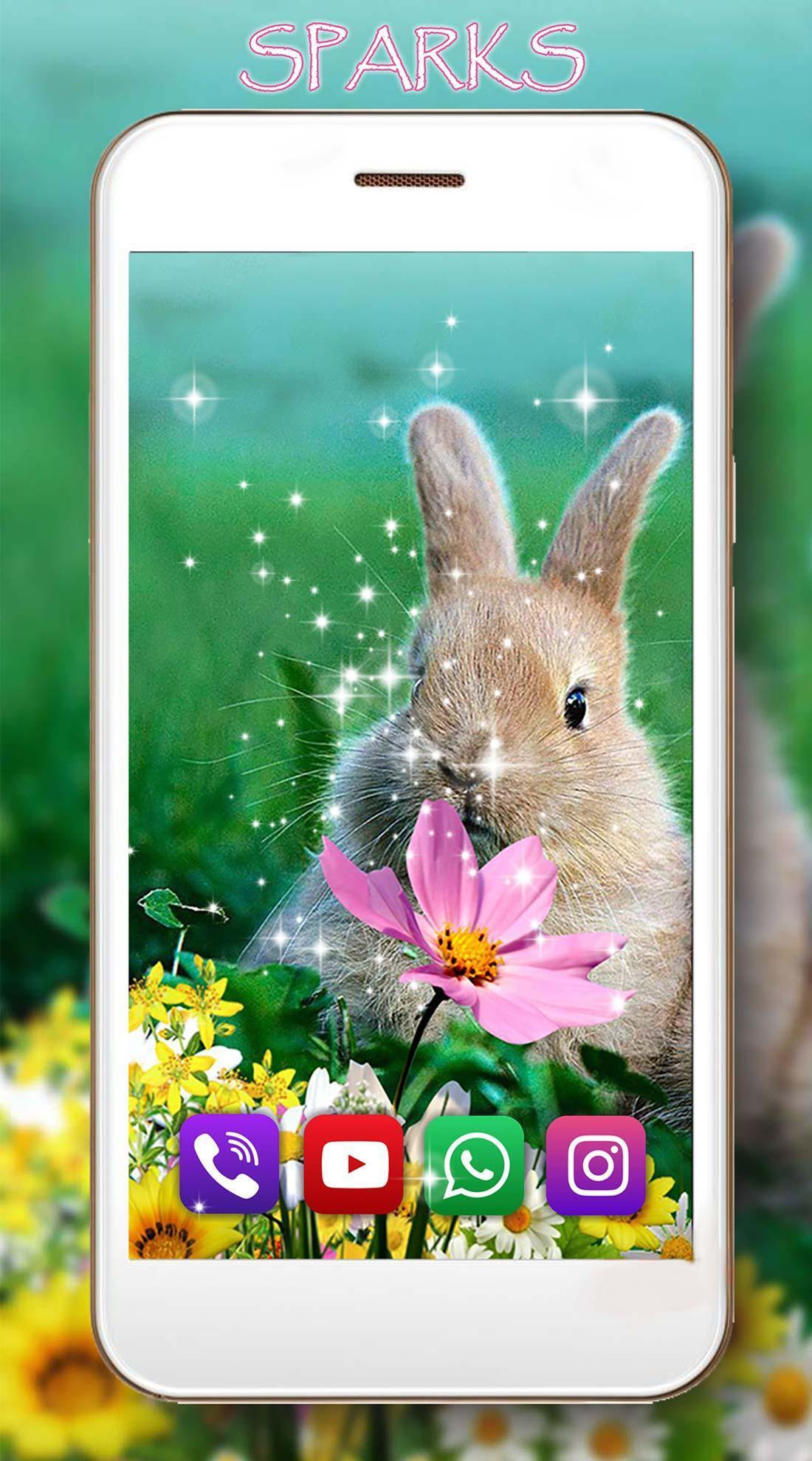 Lustige Hasen Live Wallpaper Für Android - Apk Herunterladen verwandt mit Lustige Hasen Bilder Kostenlos