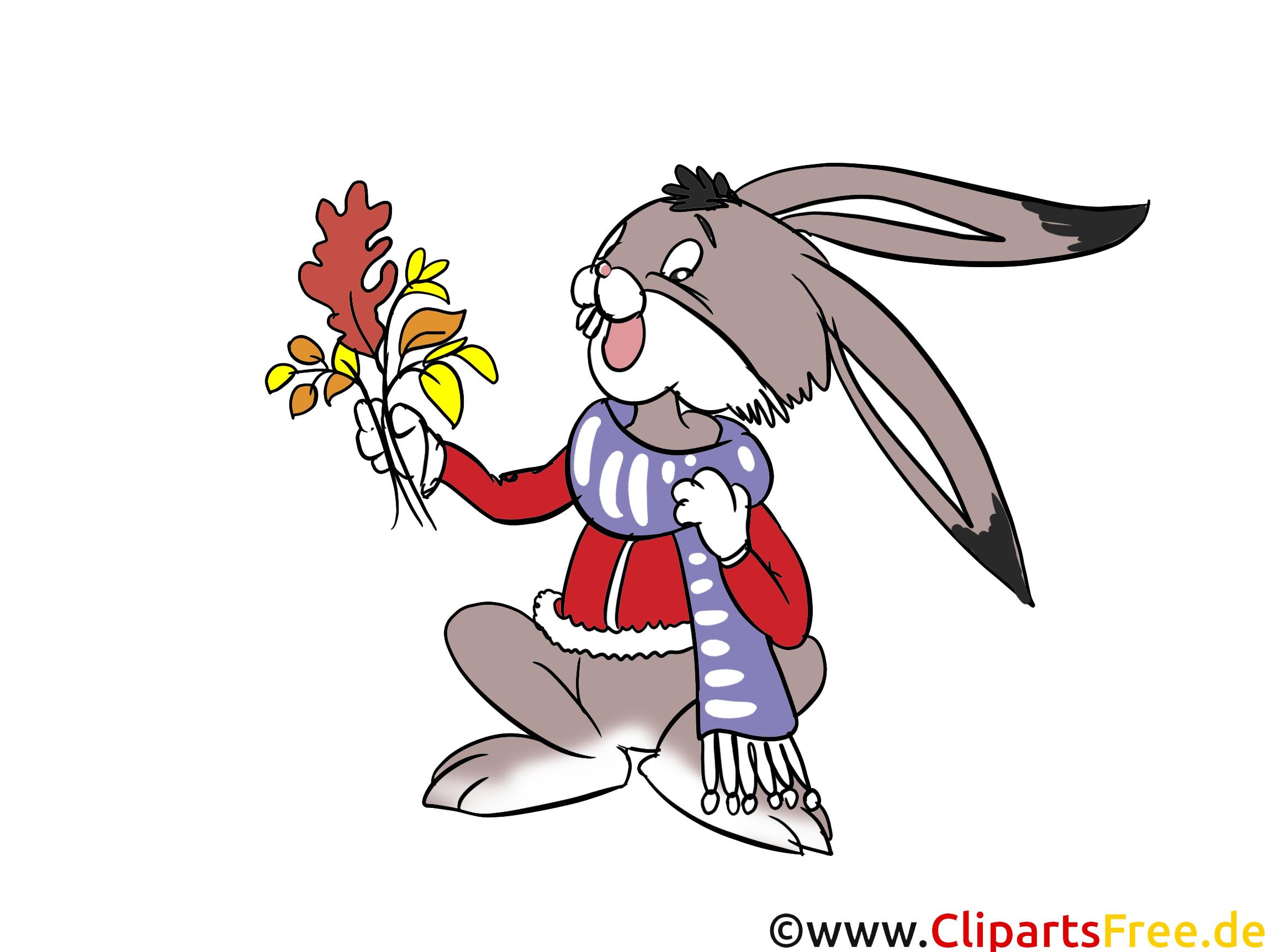 Lustiger Hase, Kaninachen Clipart, Cartoon, Comic, Illustration über Lustige Hasen Bilder Kostenlos