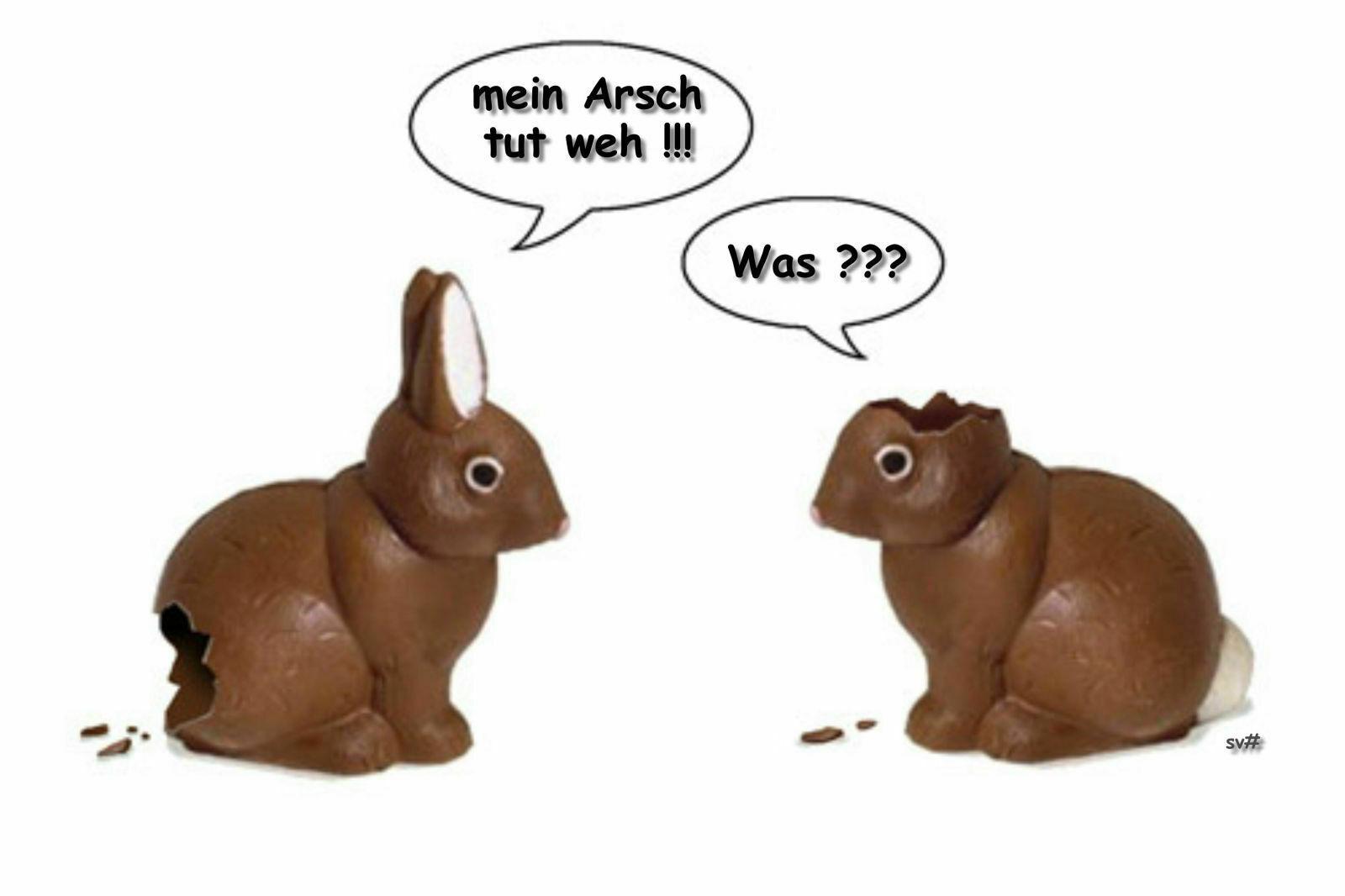 Lustiges-Zu-Ostern-Fun-Zone-Bestimmt-Fur-Ostern-Lustig bei Lustiges Zu Ostern