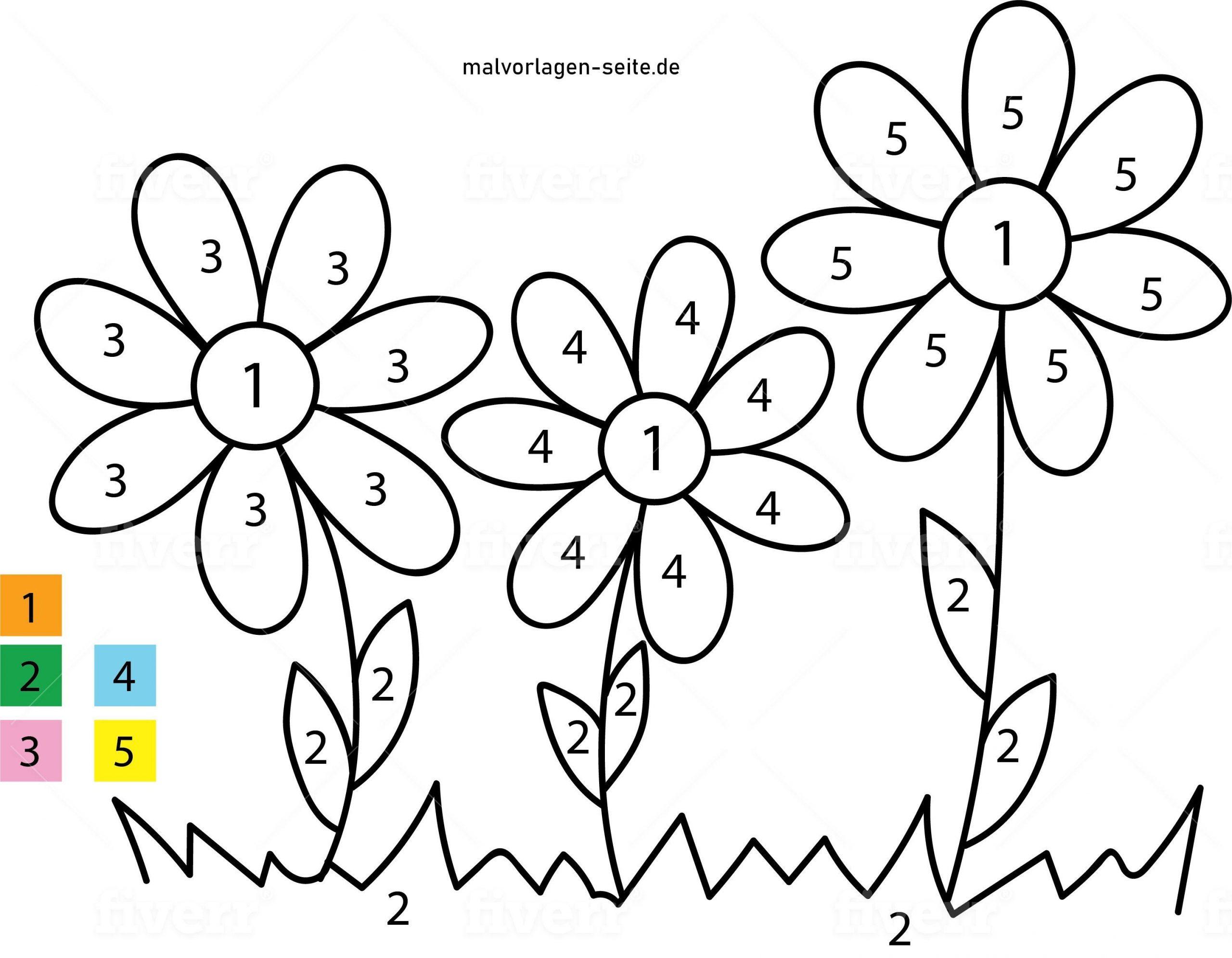 Malen Nach Zahlen - Blumen - Ausmalbilder Kostenlos in Blumen Vorlagen Zum Malen
