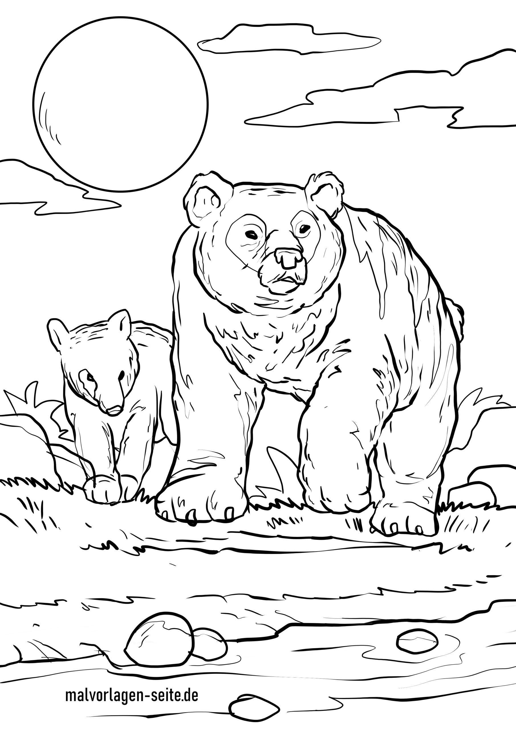 Malvorlage Bär | Tiere - Ausmalbilder Kostenlos Herunterladen innen Bären Bilder Zum Ausdrucken