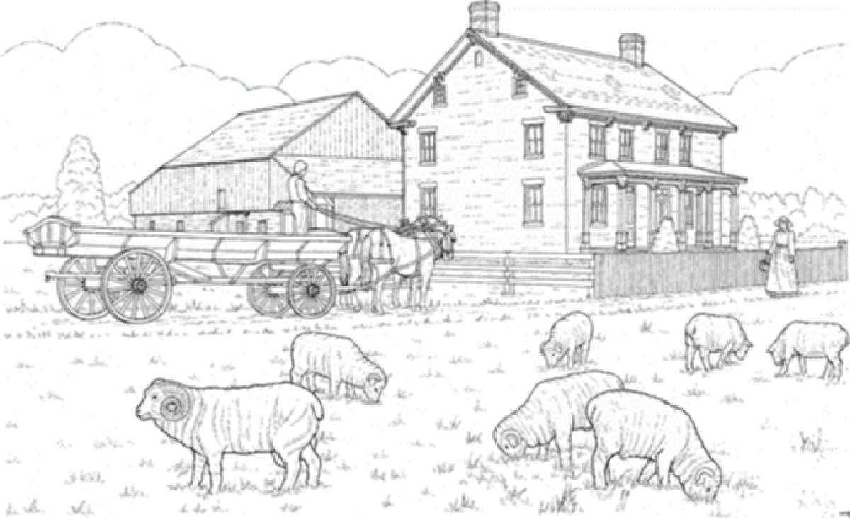 Malvorlage Bauernhof Mit Haus, Schafen Und Kutsche über Ausmalbild Kutsche