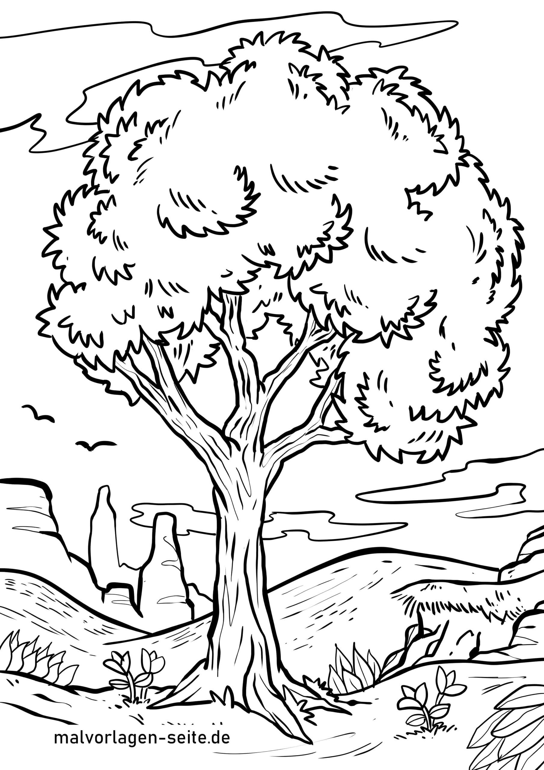 Malvorlage Baum - Ausmalbilder Kostenlos Herunterladen über Malvorlagen Baum
