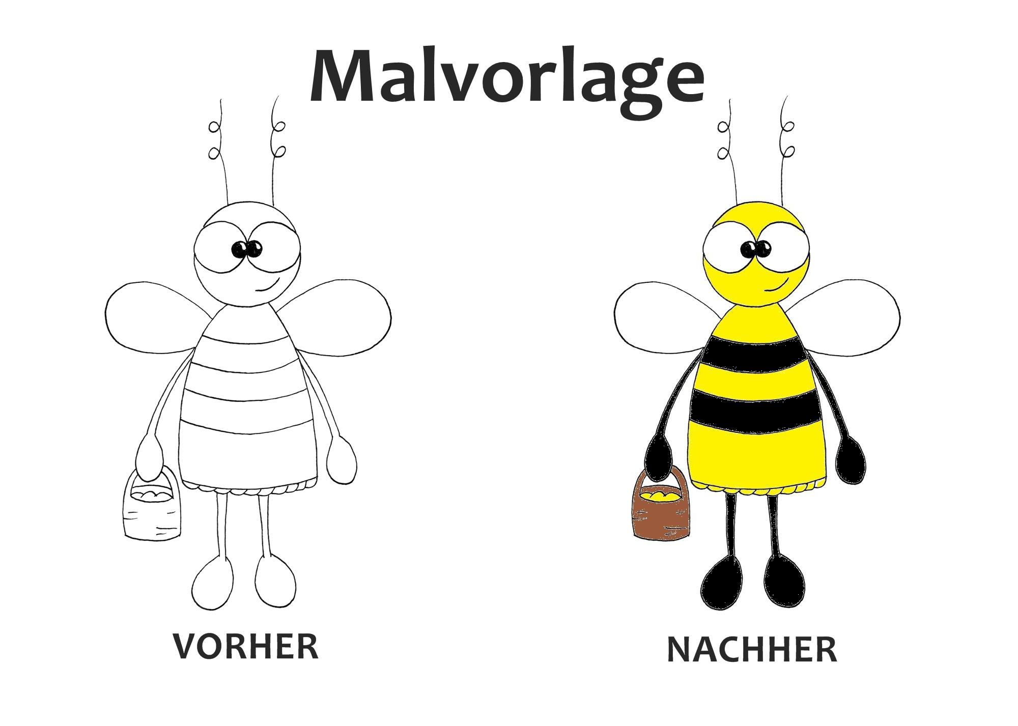 Malvorlage Biene - Pdf Datei über Biene Zum Ausmalen