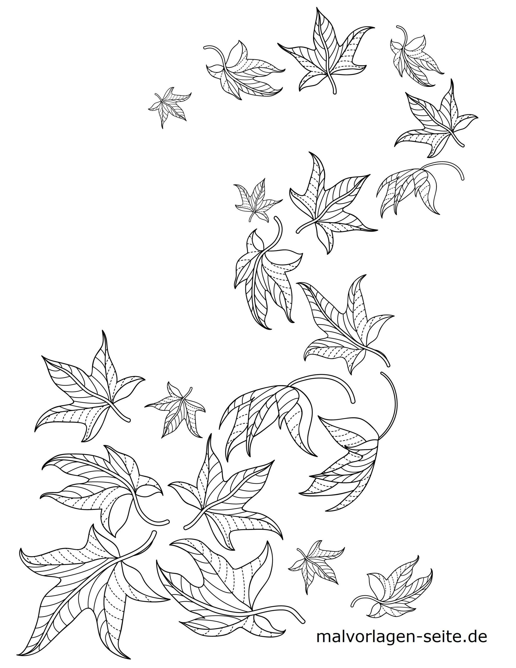 Malvorlage Blätter / Laub | Herbst - Ausmalbilder Kostenlos für Ausmalbilder Blätter