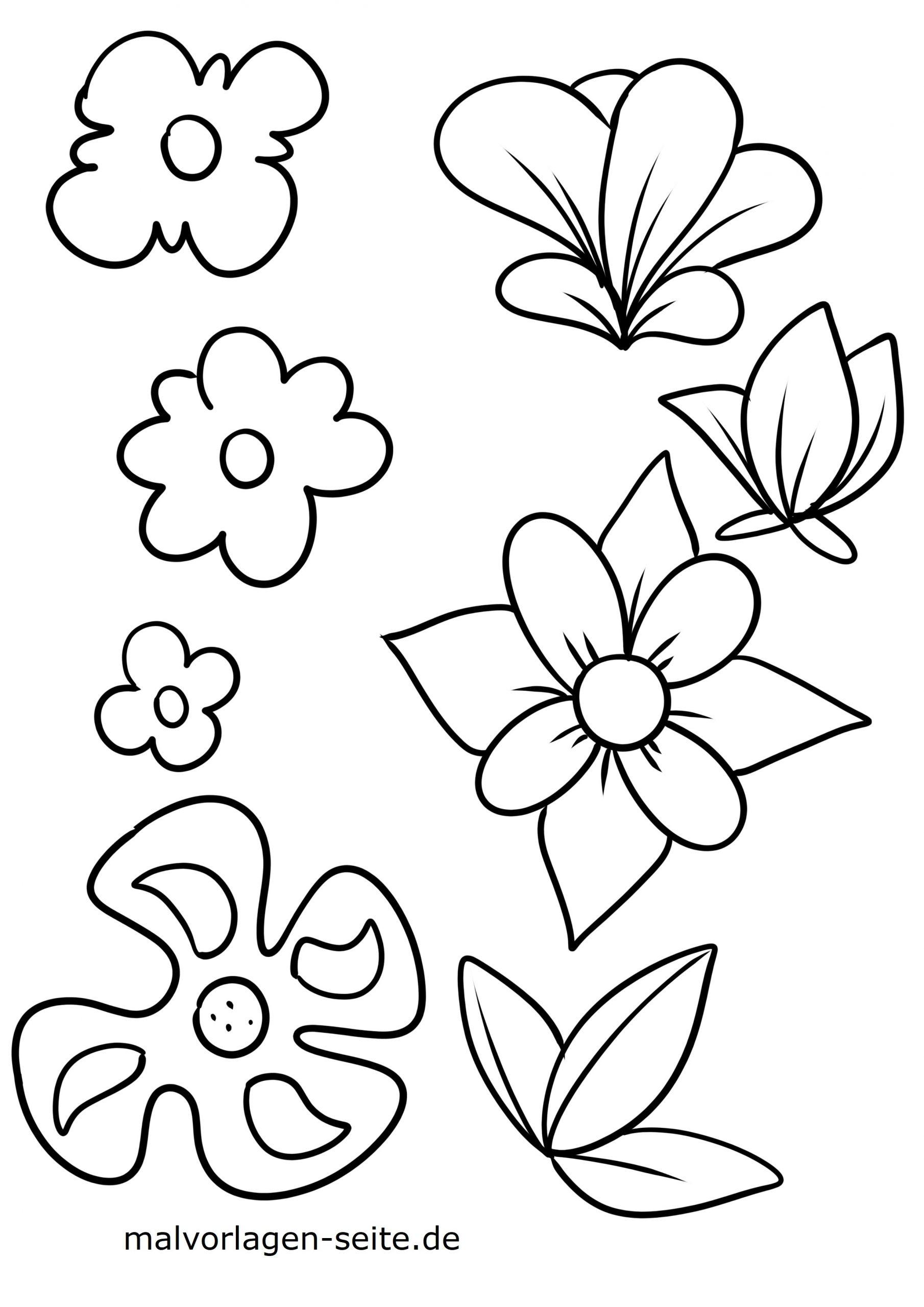 Malvorlage Blumen Blüten - Ausmalbilder Kostenlos Herunterladen ganzes Blumen Vorlagen Zum Malen