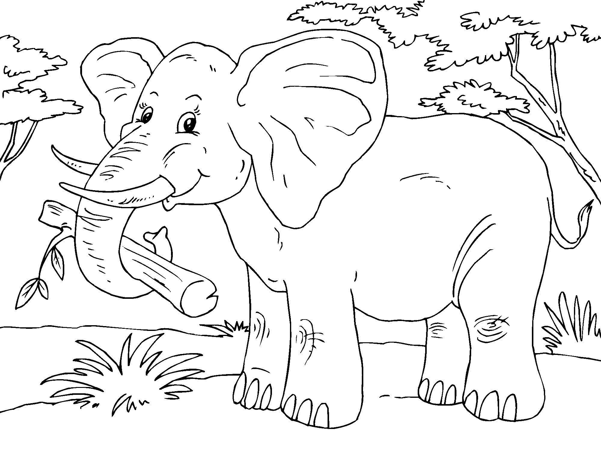 Malvorlage Elefant - Kostenlose Ausmalbilder Zum Ausdrucken. innen Elefanten Malvorlagen