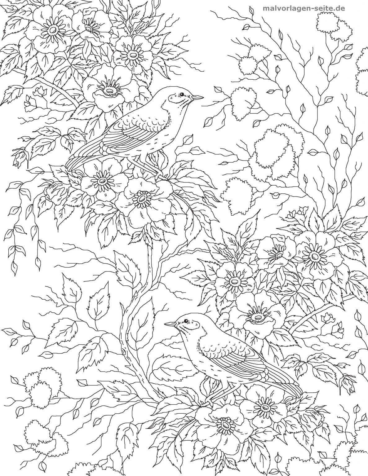 malvorlage erwachsene  vogel mit blumen  ausmalbilder