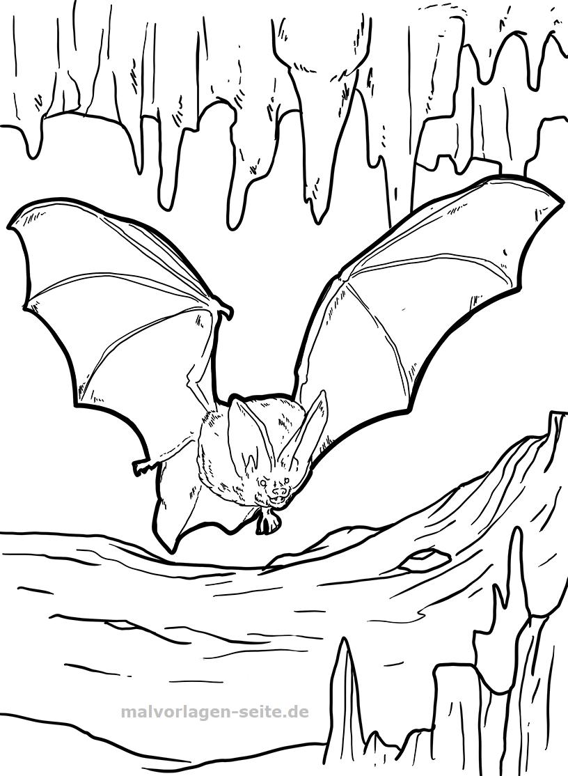 Malvorlage Fledermaus | Tiere - Ausmalbilder Kostenlos innen Fledermaus Zum Ausmalen
