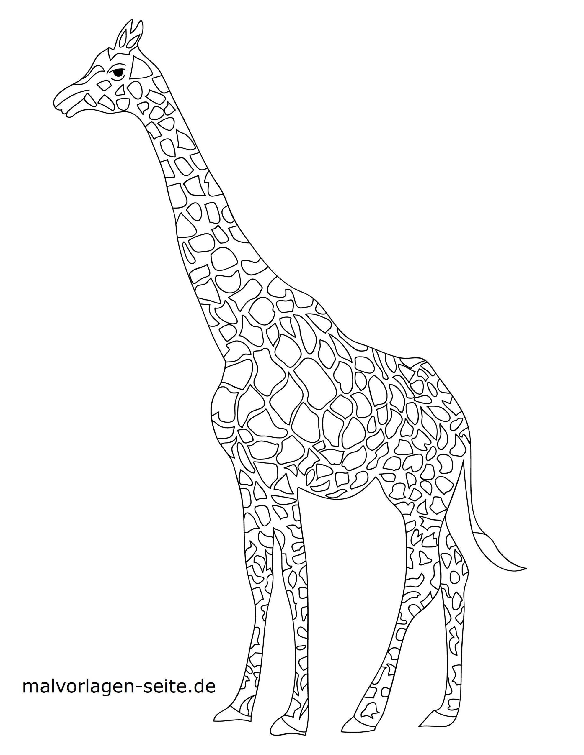 Malvorlage Giraffe   Tiere - Ausmalbilder Kostenlos bestimmt für Giraffe Ausmalbild