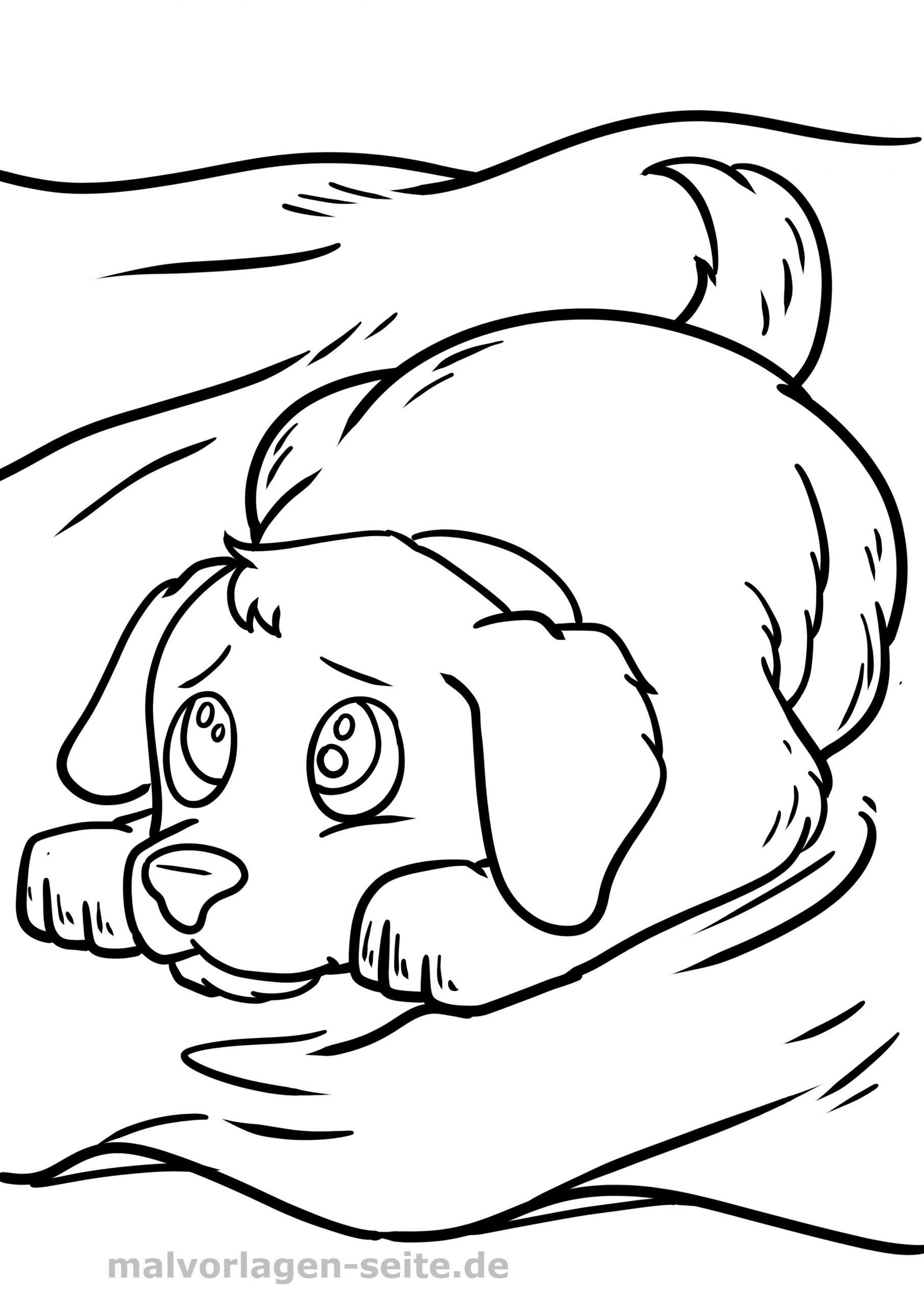Malvorlage Hund - Ausmalbilder Kostenlos Herunterladen mit Malvorlagen Hunde