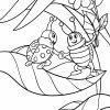Malvorlage Marienkäfer | Tiere Insekten - Ausmalbilder bestimmt für Ausmalbild Marienkäfer