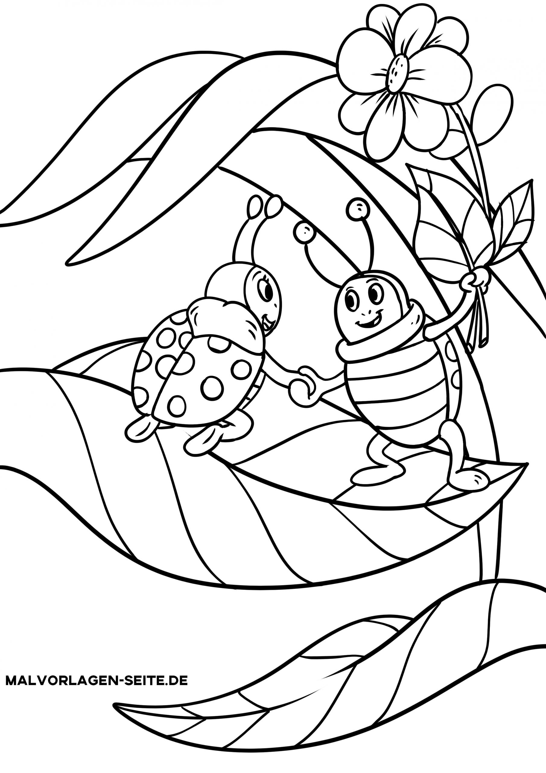 Malvorlage Marienkäfer   Tiere Insekten - Ausmalbilder verwandt mit Malvorlage Marienkäfer