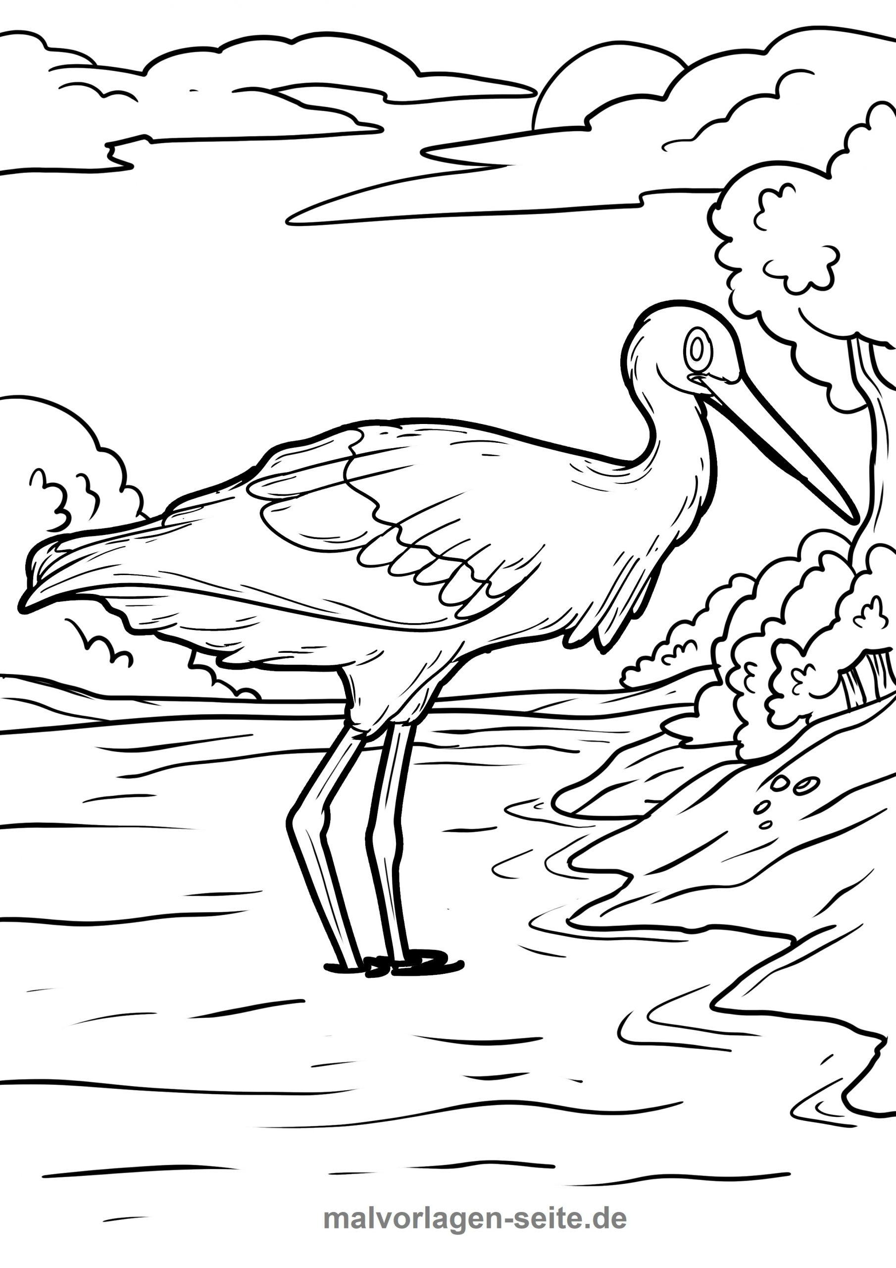 Malvorlage Storch | Tiere - Ausmalbilder Kostenlos Herunterladen über Storch Zum Ausmalen
