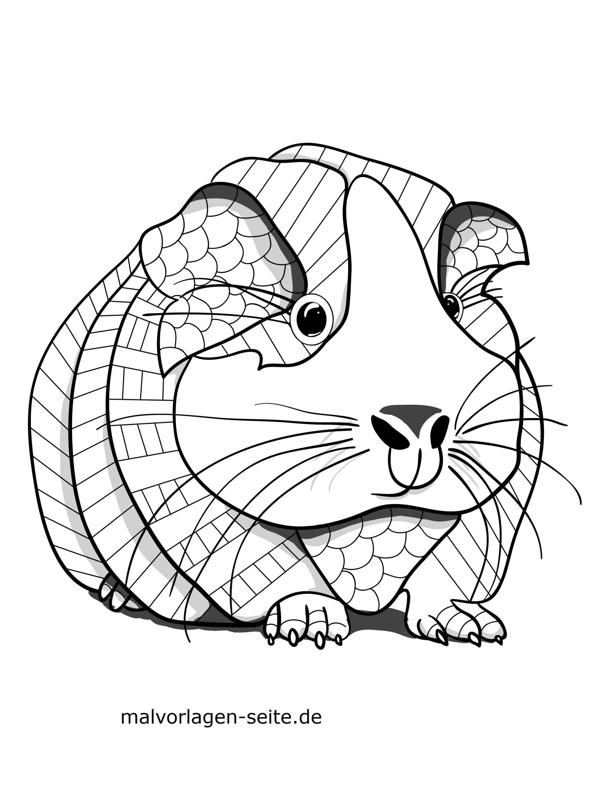 Malvorlage Tiermandala Meerschweinchen | Tiere Mandalas für Meerschweinchen Bilder Zum Ausdrucken