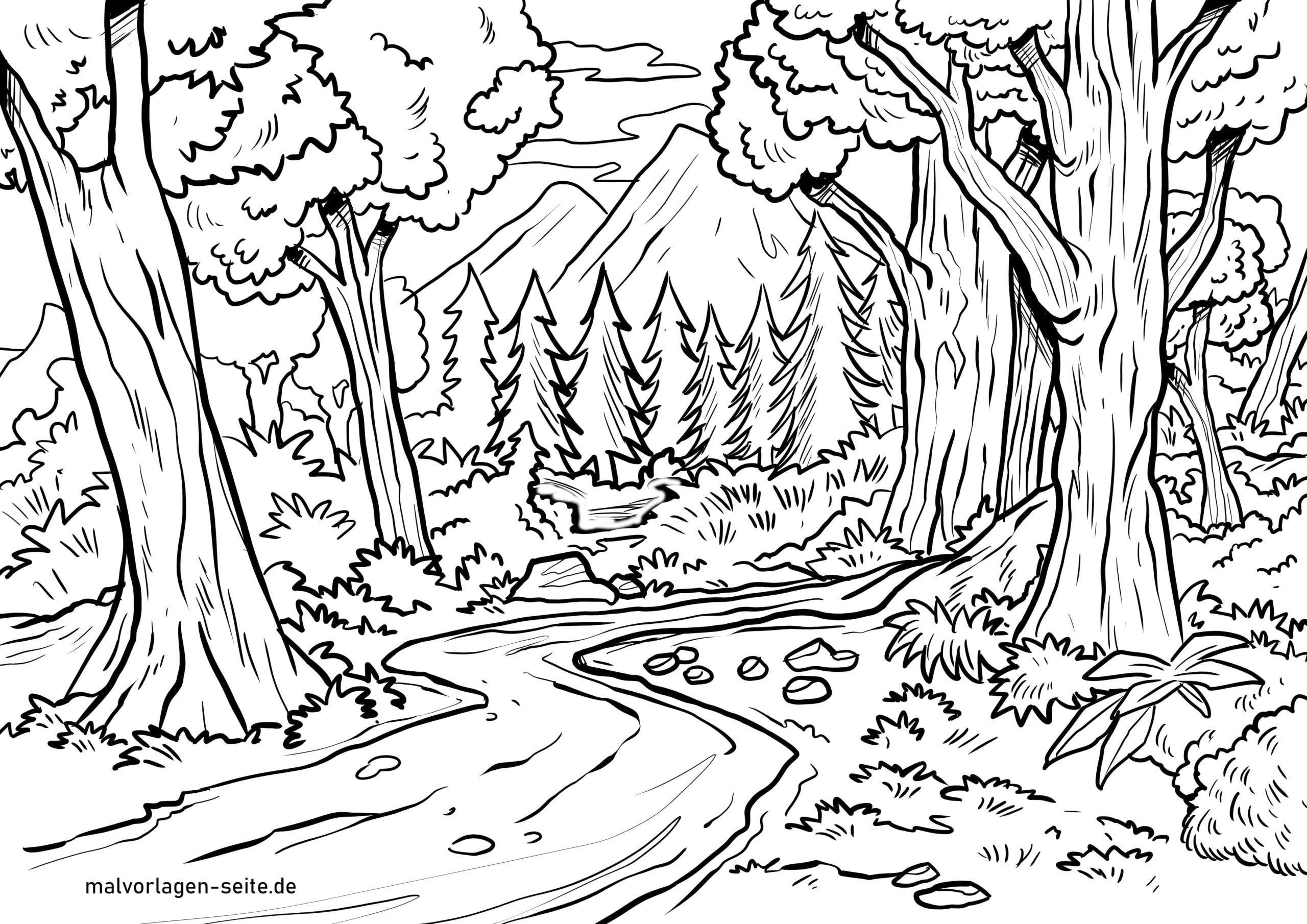 Malvorlage Wald - Ausmalbilder Kostenlos Herunterladen innen Wald Ausmalbild