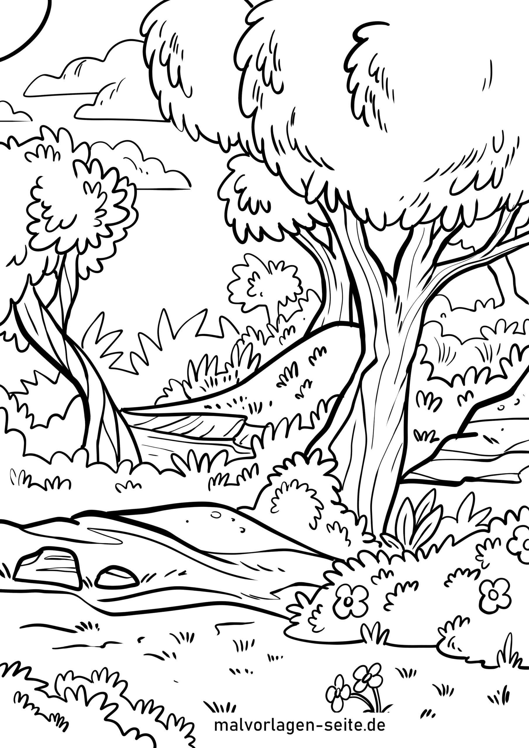 Malvorlage Wald - Ausmalbilder Kostenlos Herunterladen mit Wald Ausmalbild