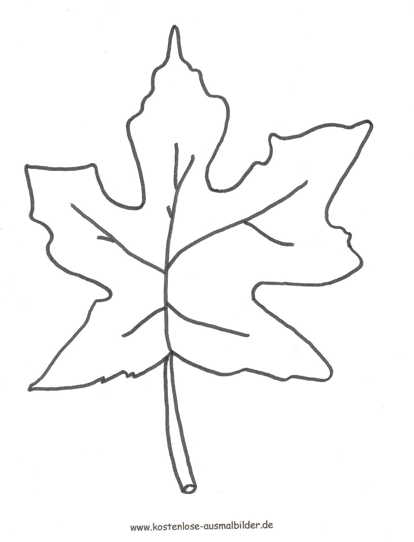 Malvorlagen - Ausmalbilder Laub / Blã¤Tter   Malvorlagen Zum über Malvorlagen Herbst Blätter Ausdrucken