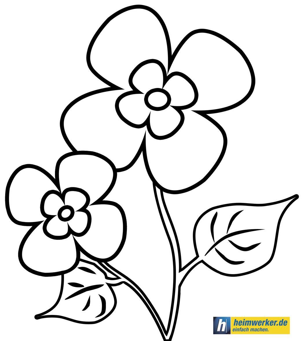 Malvorlagen: Die Schönsten Kostenlosen Ausmalbilder bei Kostenlose Malvorlagen Blumen