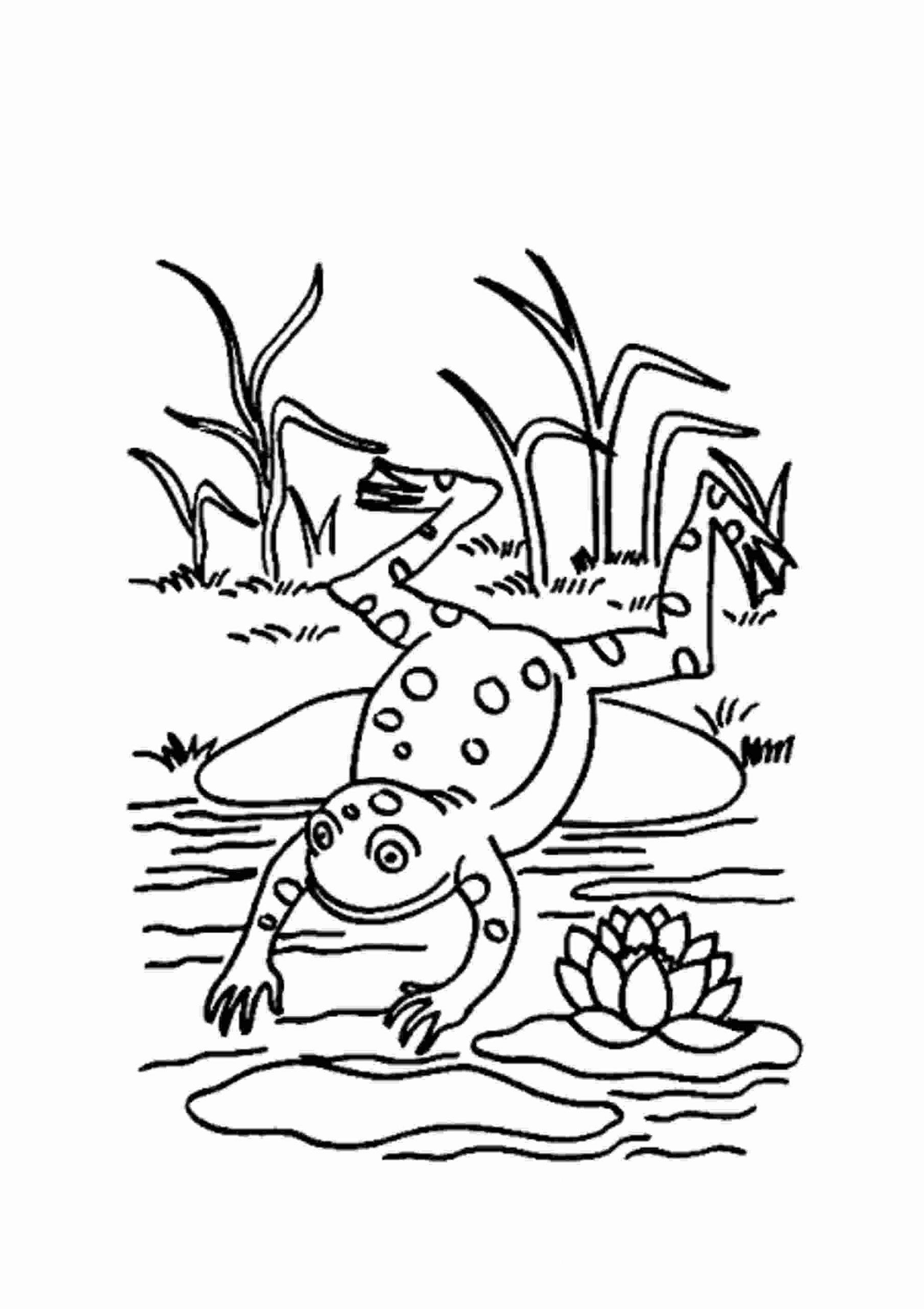 Malvorlagen Fur Kinder Ausmalbilder Frosch Kostenlos Page Of bestimmt für Kinderausmalbilder