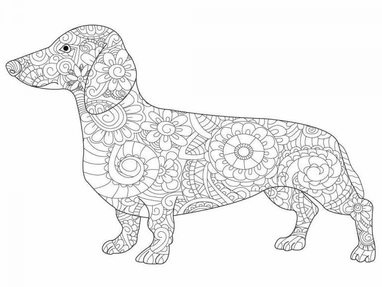 malvorlagen hund zum ausdrucken  coloring and malvorlagan