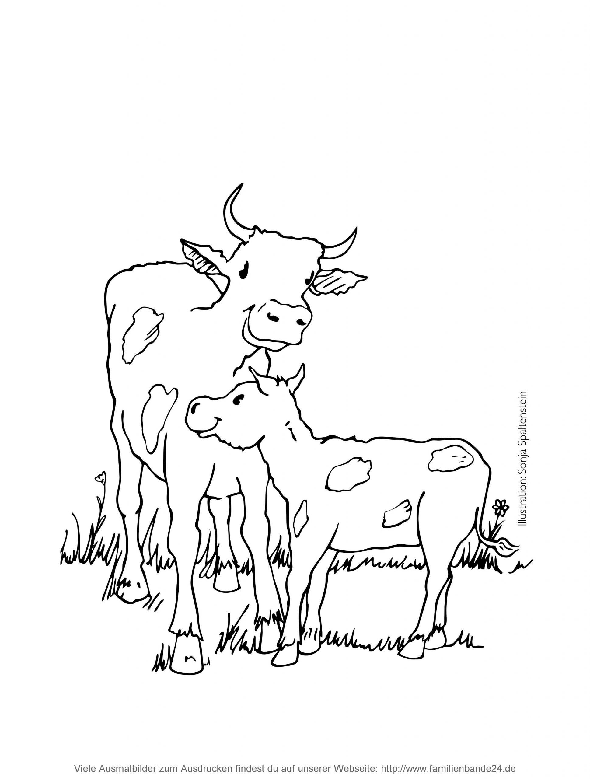Malvorlagen Kuh Auf Der Weide   Coloring And Malvorlagan mit Kuh Malvorlage