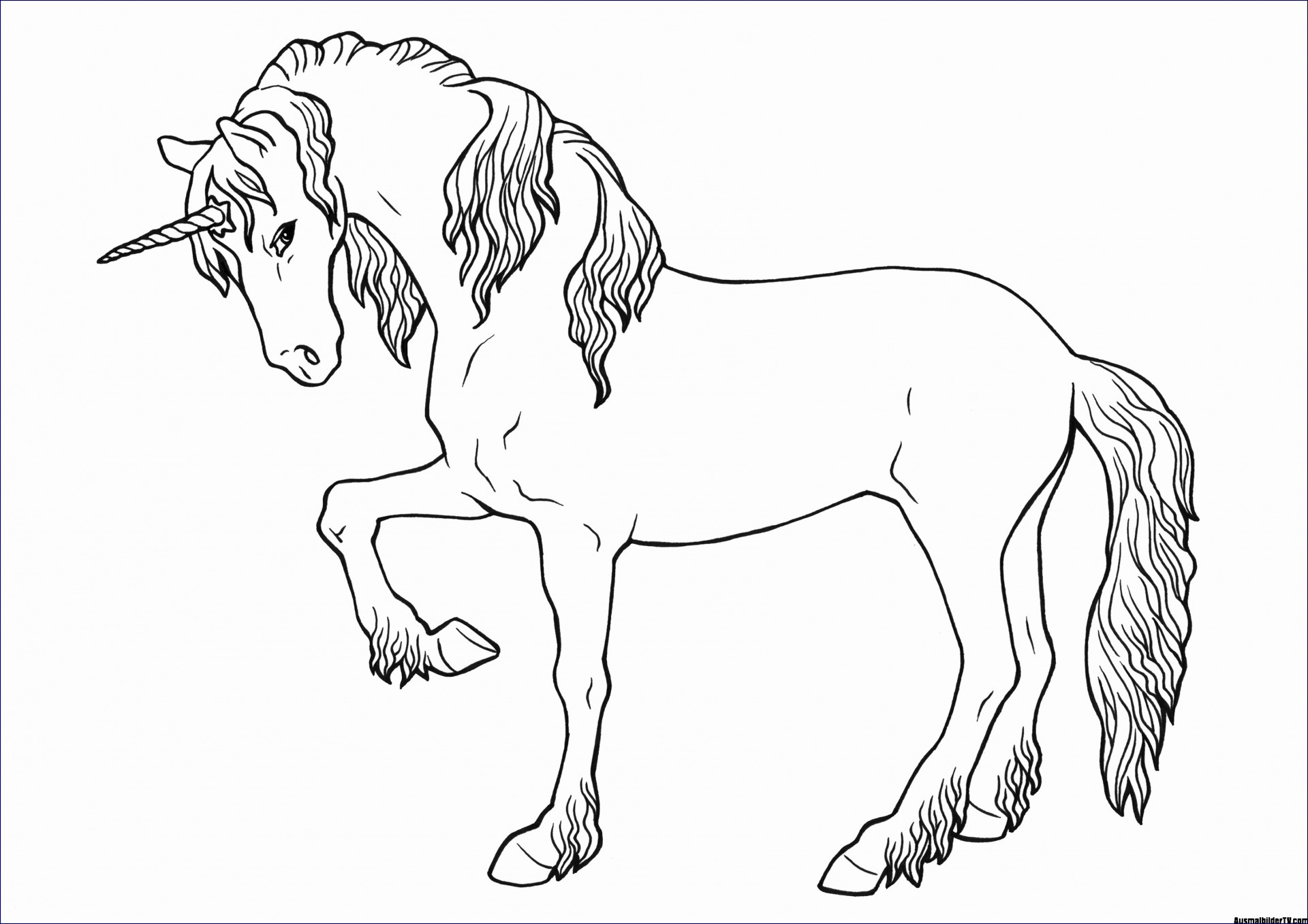 pferdebilder zum ausmalen und ausdrucken - kinderbilder