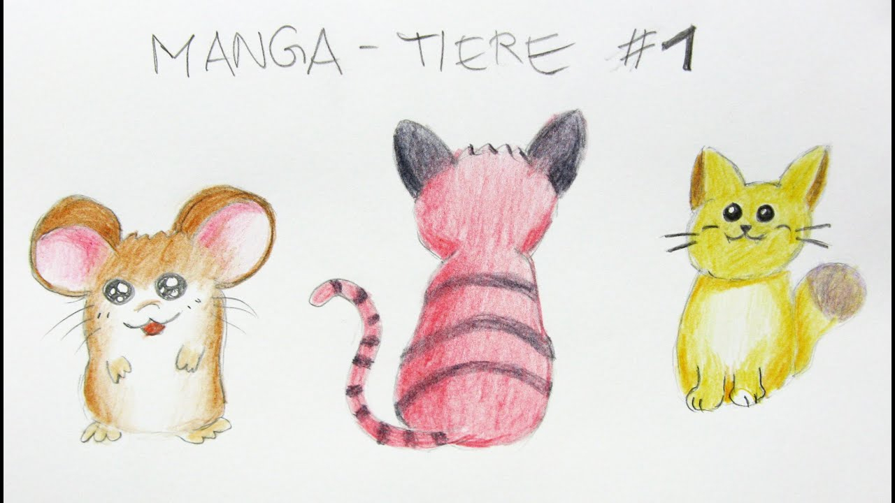 Manga Tiere Zeichnen Lernen #1: Einfache Tiere / Manga Zeichenkurs ganzes Tiere Einfach Zeichnen