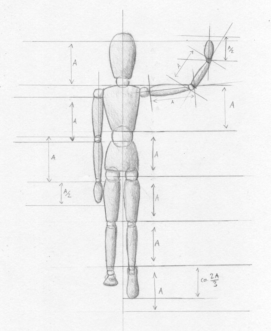 Menschen Zeichnen - Proportionen Mann Und Frau - Zeichenkurs innen Wie Zeichne Ich Einen Menschen