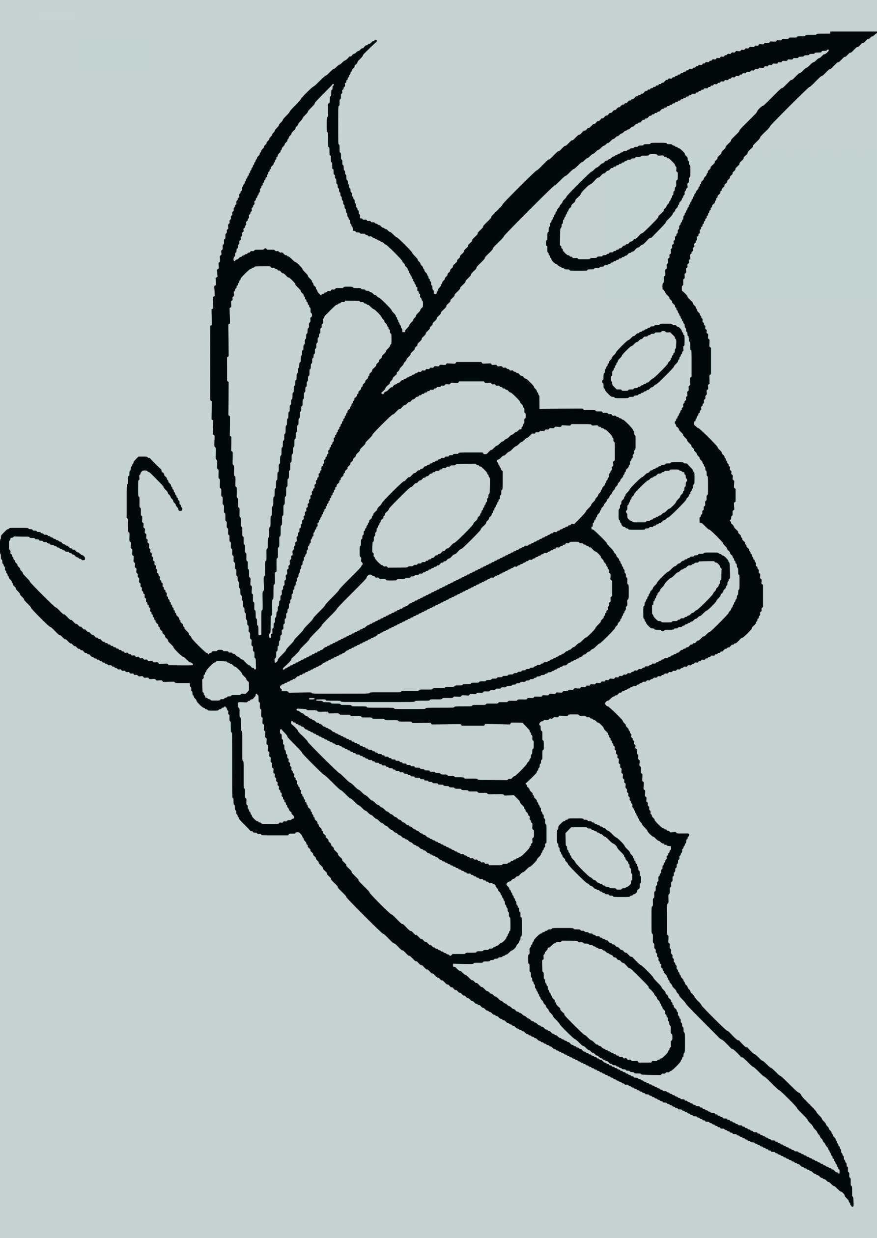 Neu Schmetterling Vorlagen In 2020 | Schmetterling Vorlage in Schmetterlinge Vorlagen