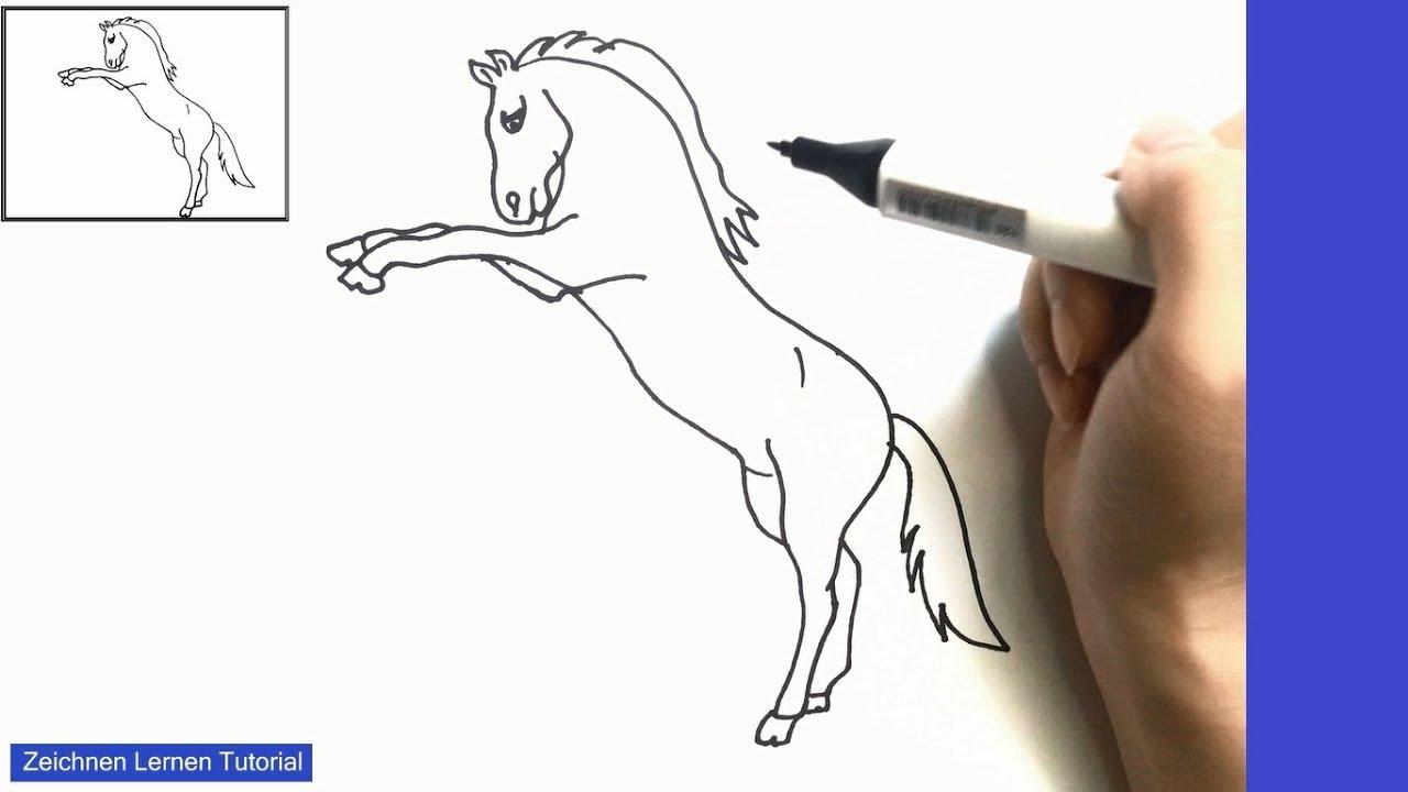 Pferd Zeichnen Lernen Einfach Schritt Für Schritt Für Anfänger 4 – Zeichnen  Lernen Tutorial über Pferde Zeichnen Lernen Für Anfänger